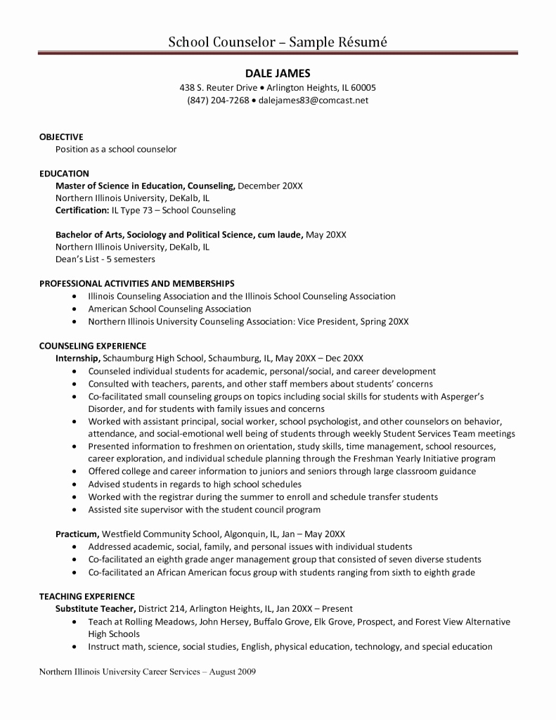 After School Counselor Resume - Substance Abuse Counselor Resume Licensed Professional Counselor