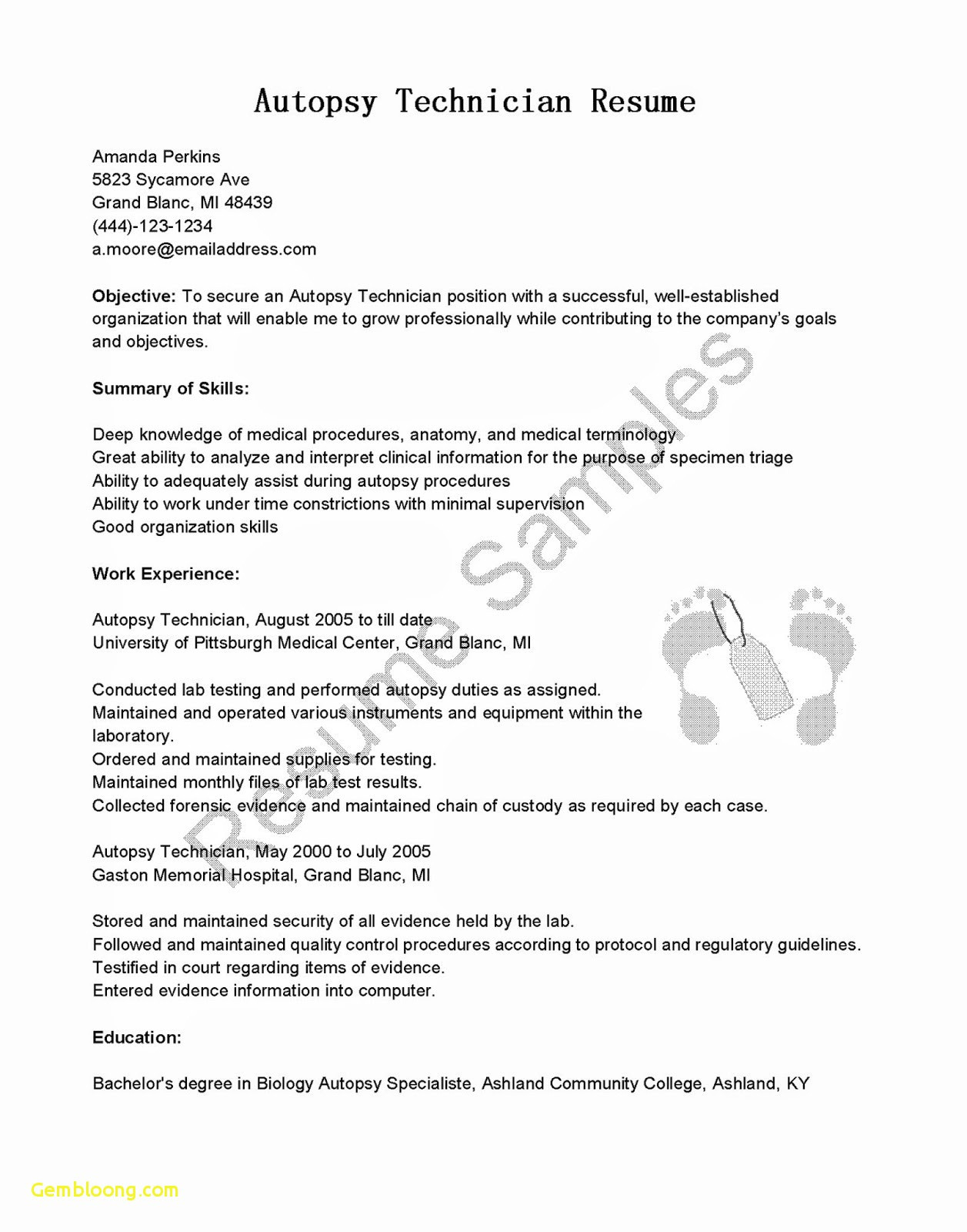 Biology Resume Template - 38 Standard Resume Templates Word