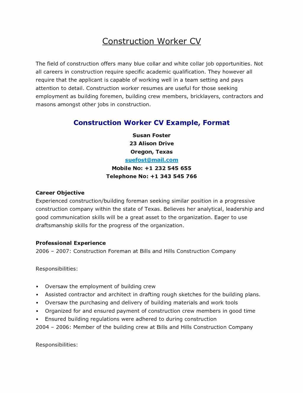 blue collar resume template example-Blue Collar Resume Templates Best Resume for Construction 19 Professional Worker Sample Construction 13-q