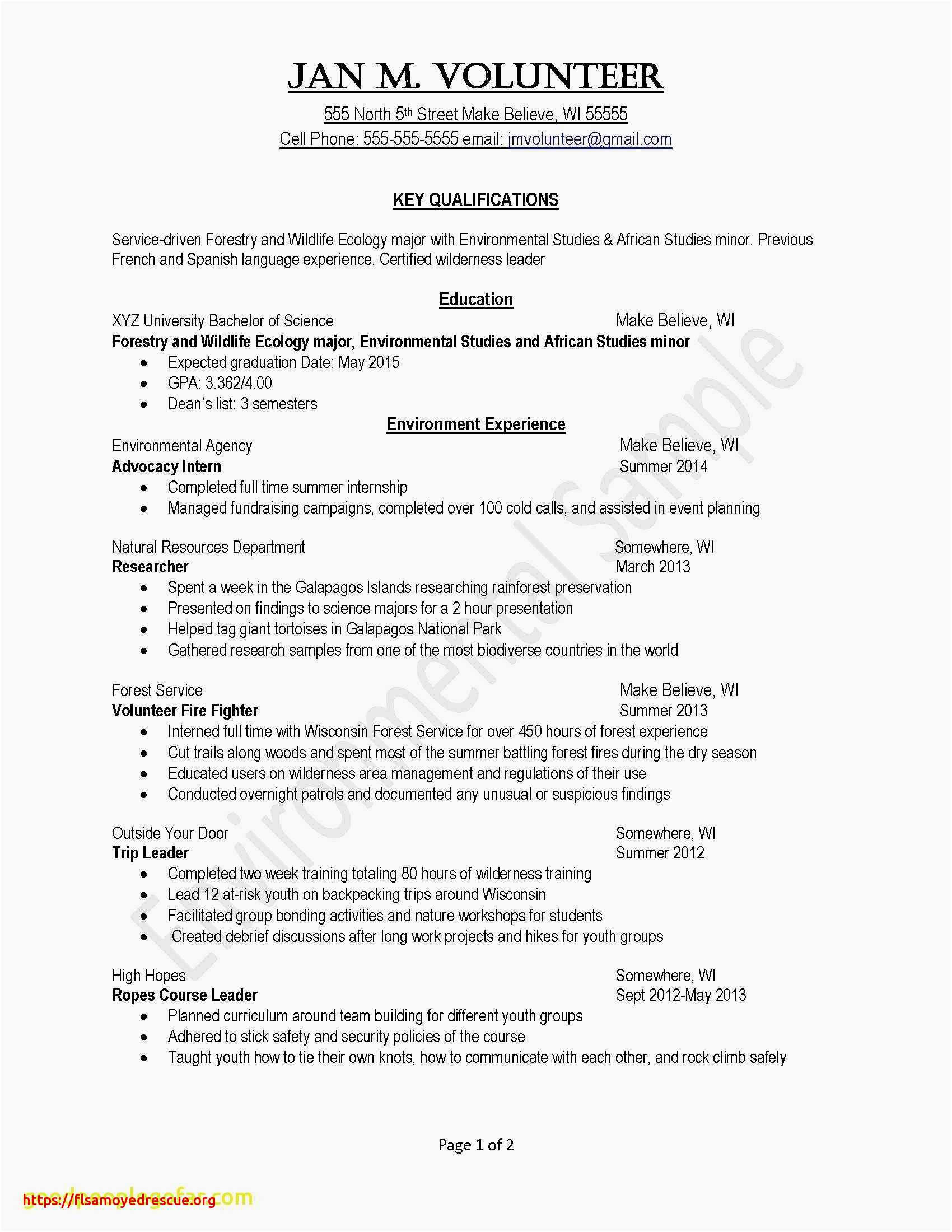 Brief Summary for Resume - How to Write A Professional Summary Resume Simple Fresh Examples