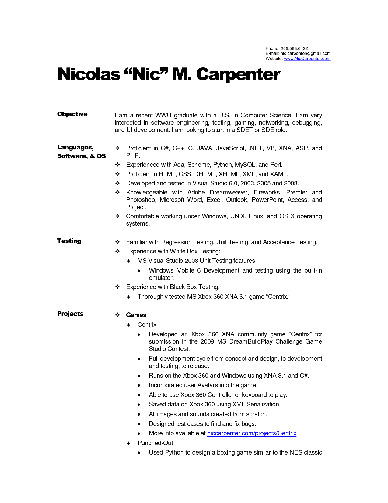 Carpenter Resume Template - Download Best Example Resume Summary