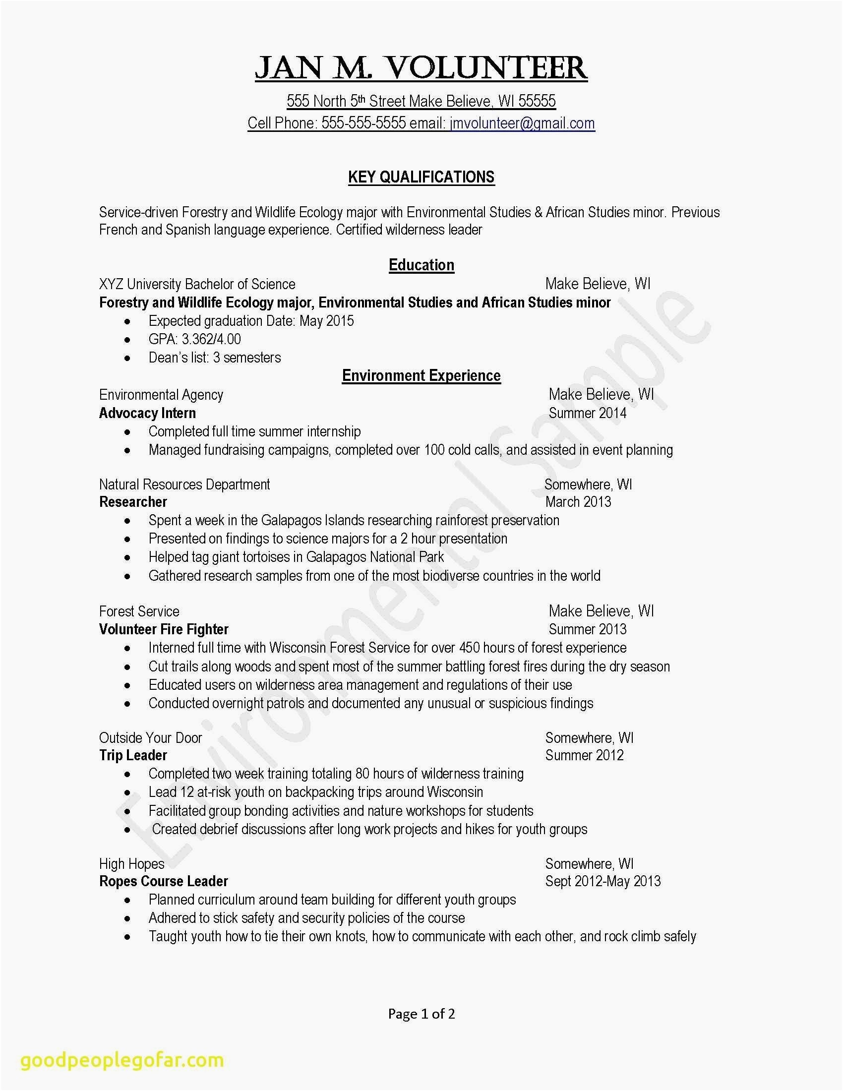 Cio Resume Template - Skill Set Resume Best Awesome Examples Resumes Ecologist Resume