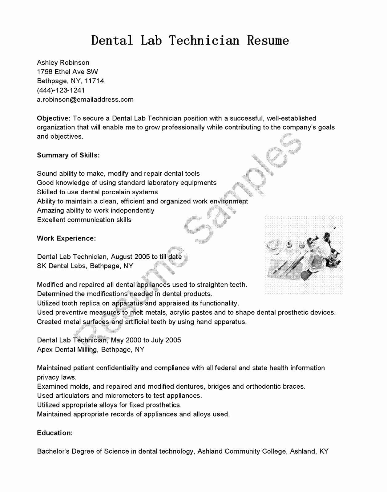 Collaborated Synonym - Collaborate Synonym Resume