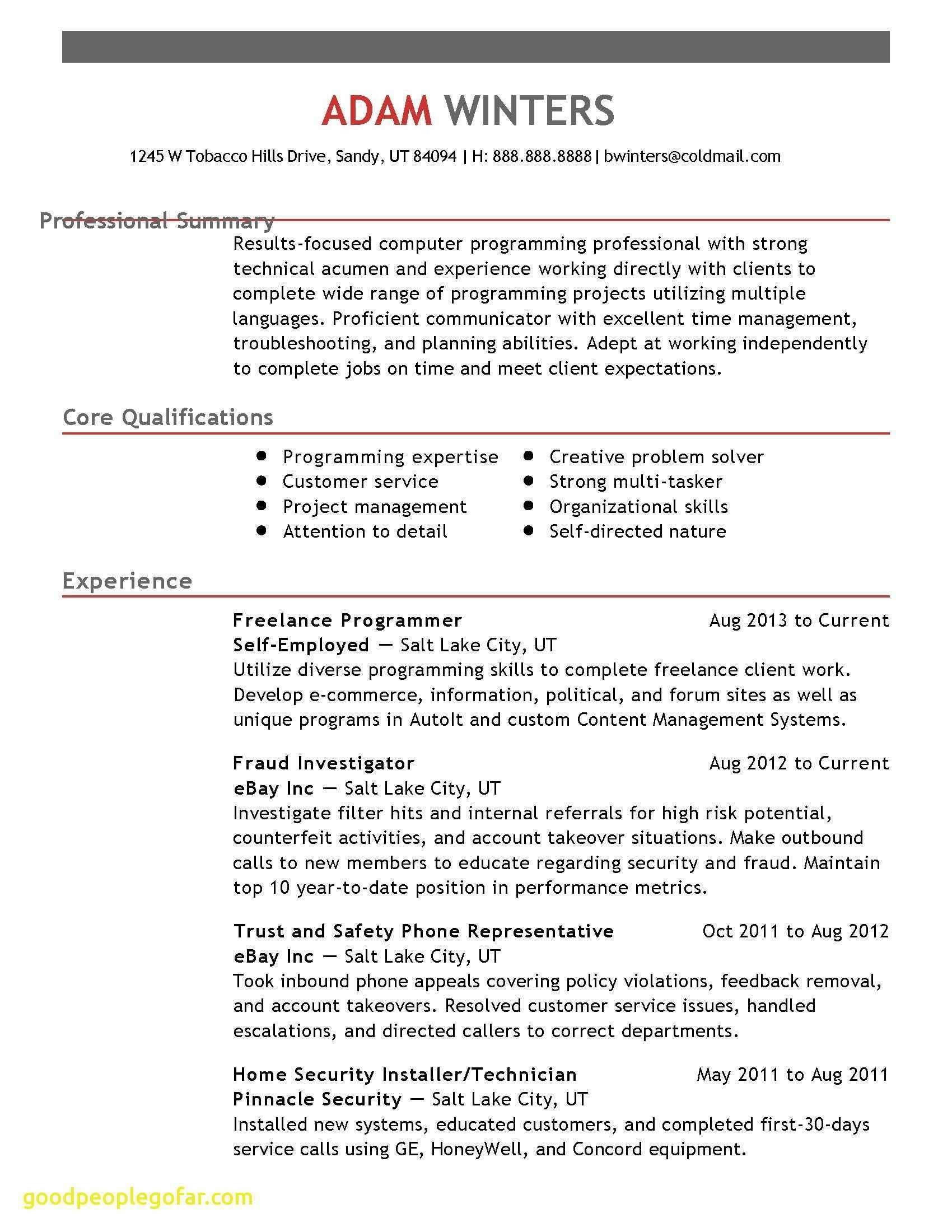 Computer Programmer Resume - Resume Website Examples New Resume Website Template Free