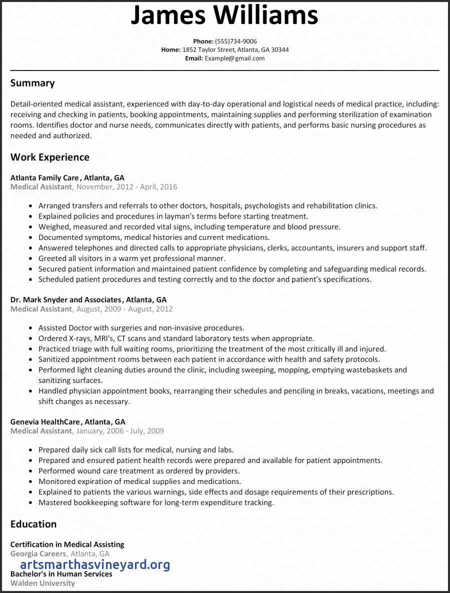 Customer Service Experience Resume - Customer Service Resume Summary Best Beautiful Grapher Resume