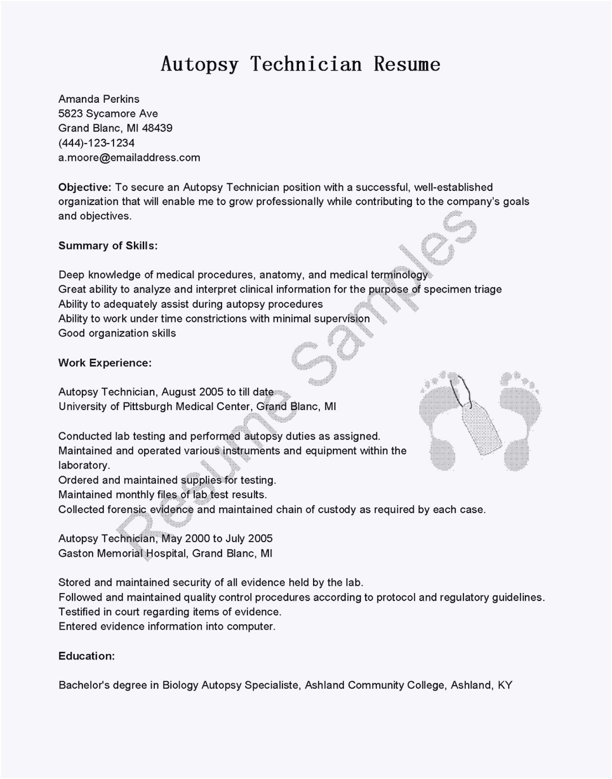 Desktop Support Resume Template - Schön Lebenslauf It