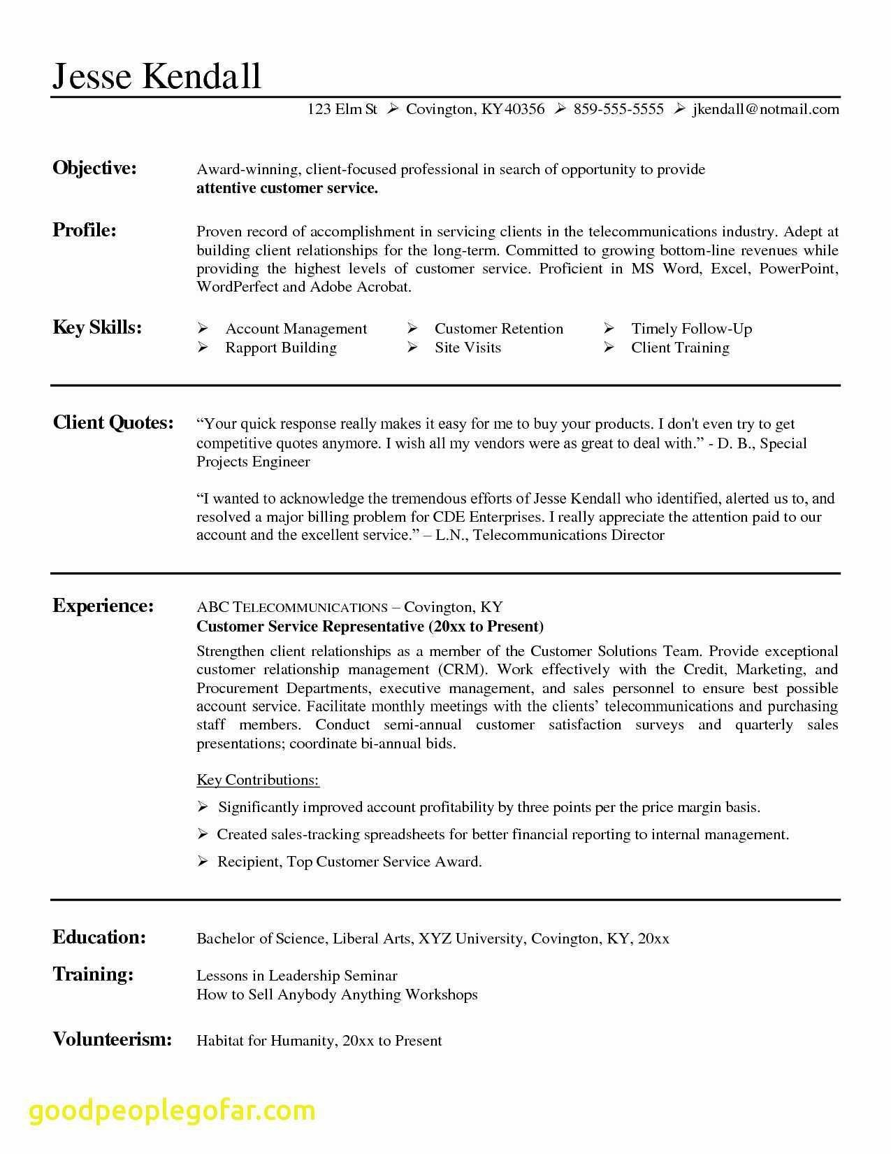 Executive Hybrid Resume Template - 20 Hybrid Resume Template