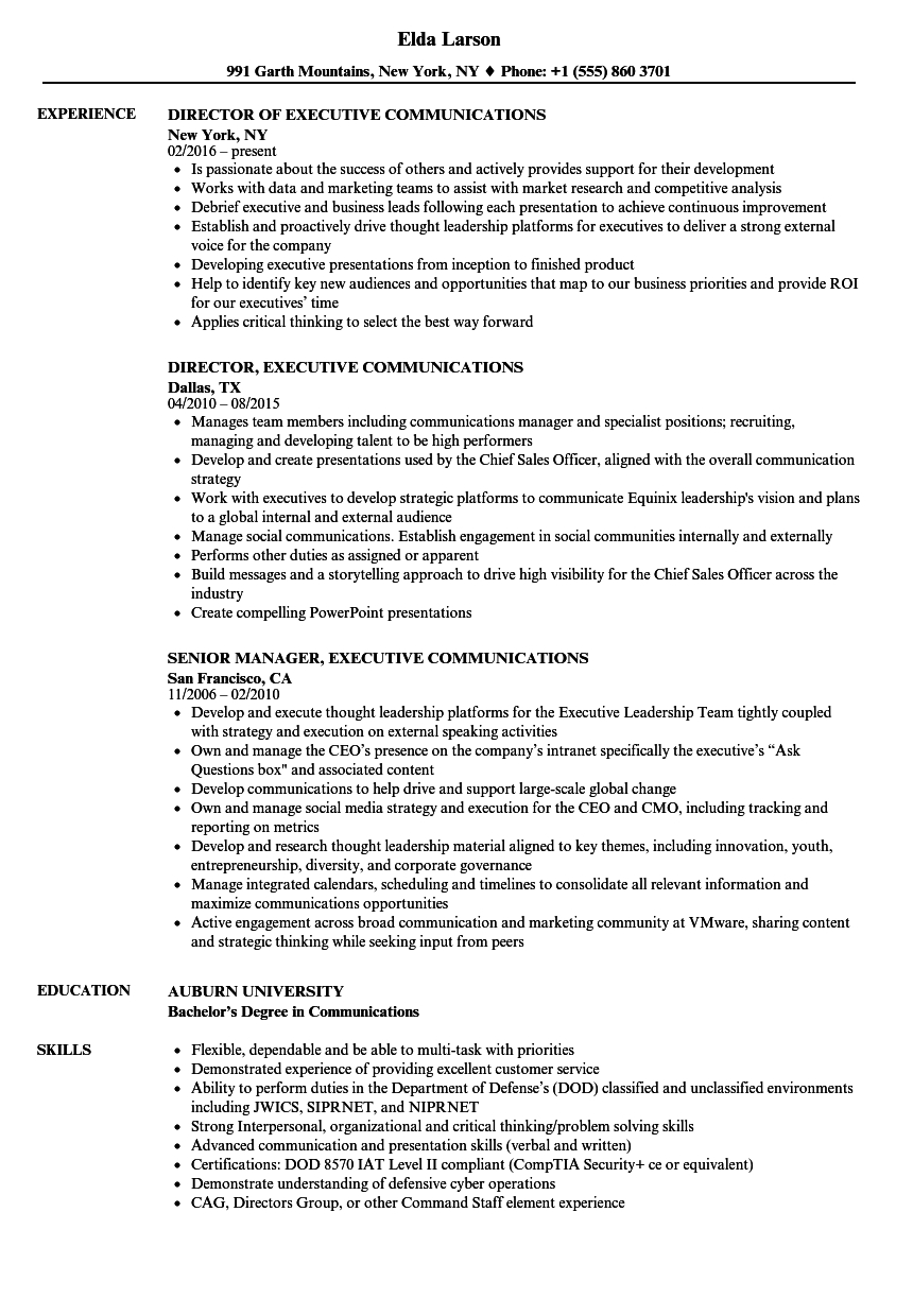 Executive Hybrid Resume Template - Executive Munications Resume Samples