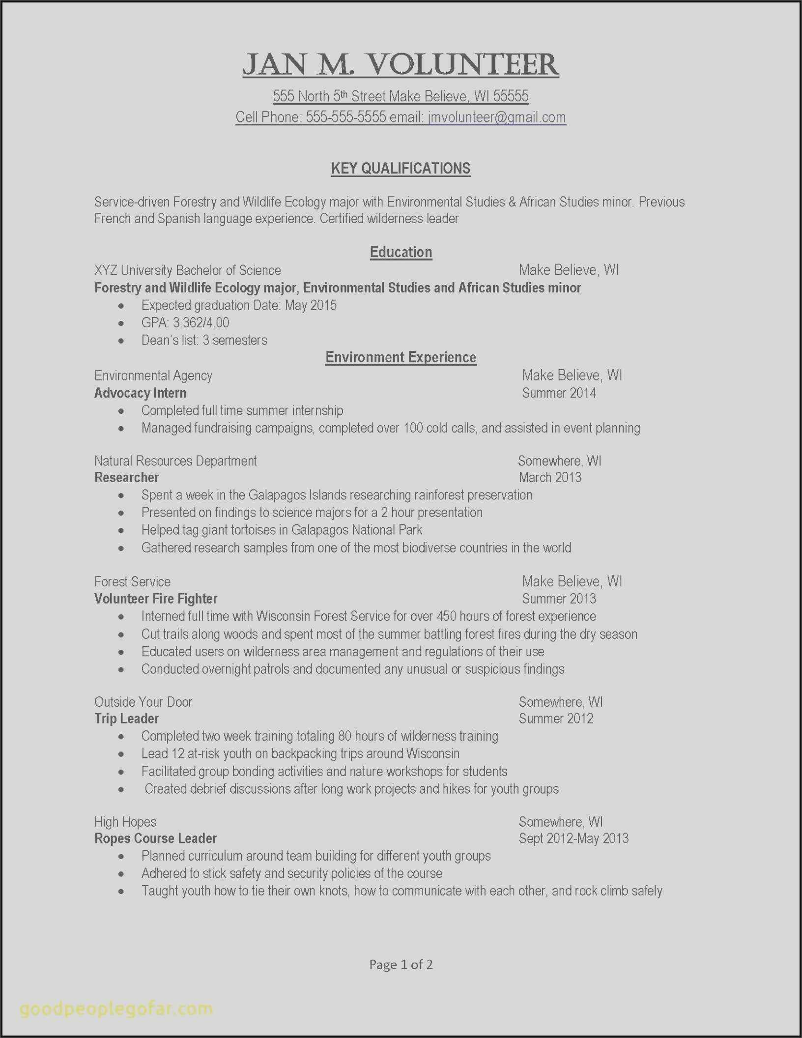 Executive Summary for Resume - Management Summary Sample Elegant 13 Premium Executive Summary