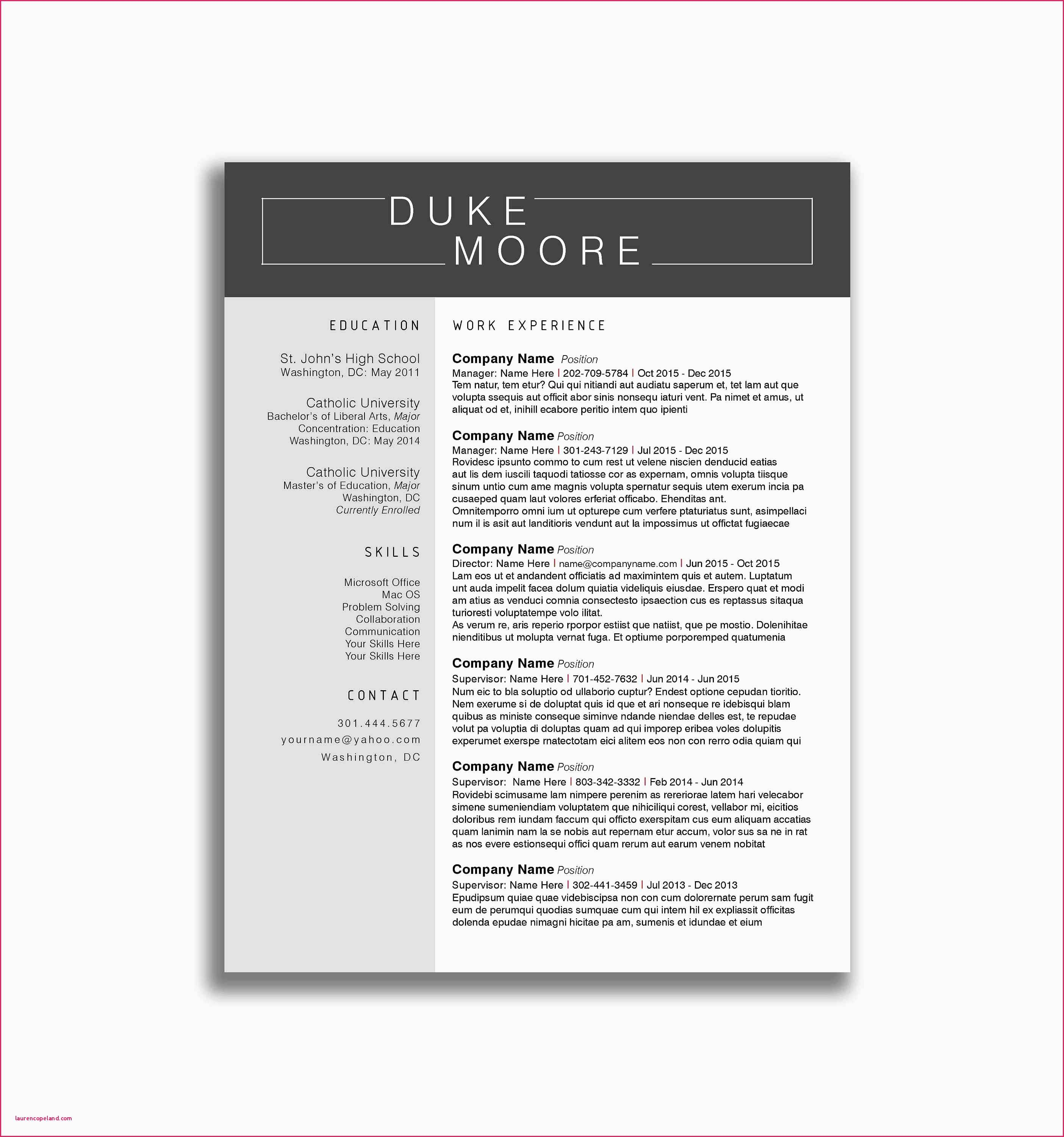 Google Docs Resume Template Reddit - Google Docs Lebenslauf Vorlage Beautiful Cv Template Google Docs
