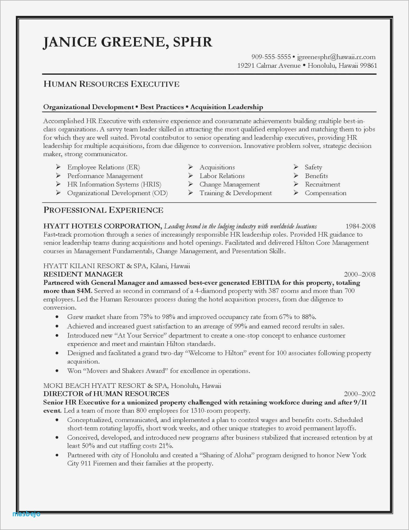 Human Resources Resume Summary - Professional Summary Resume Examples