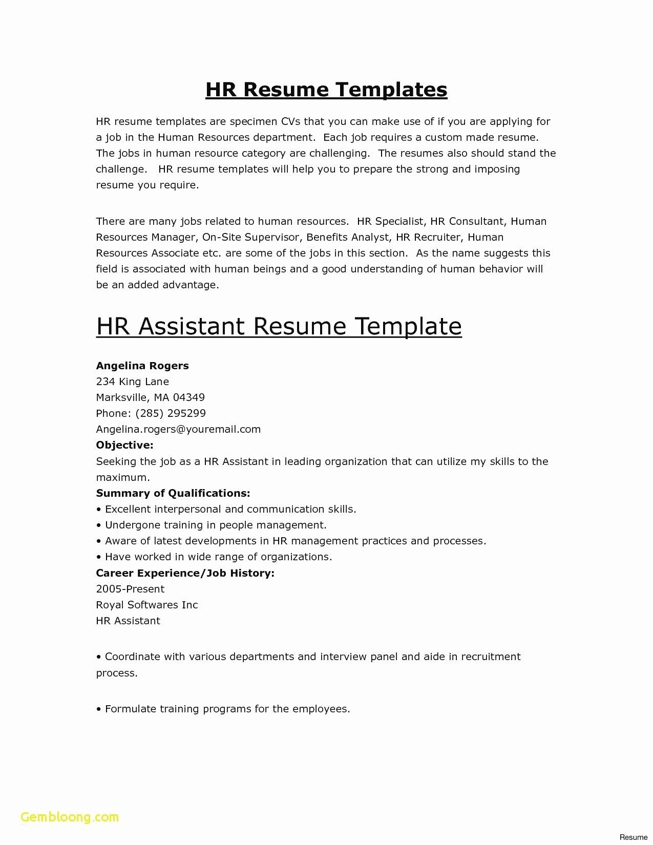 Human Resources Resume Summary - Human Resources Resume Best New Programmer Resume Lovely Resume