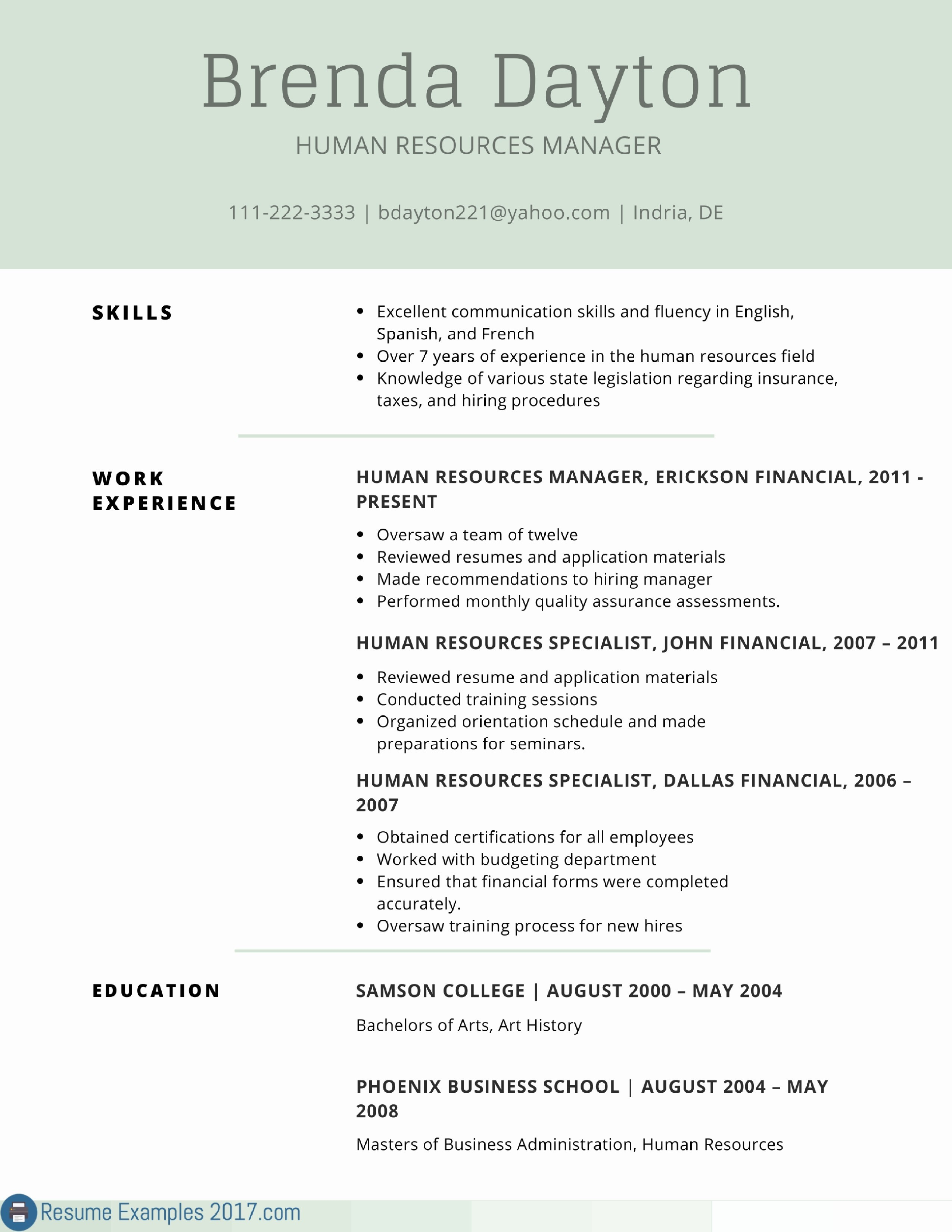 Human Resources Resume Summary - Download Best Example Resume Summary