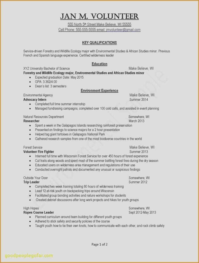 Key Qualifications Resume - Lovely Key Skills Resume the New Resume Resource