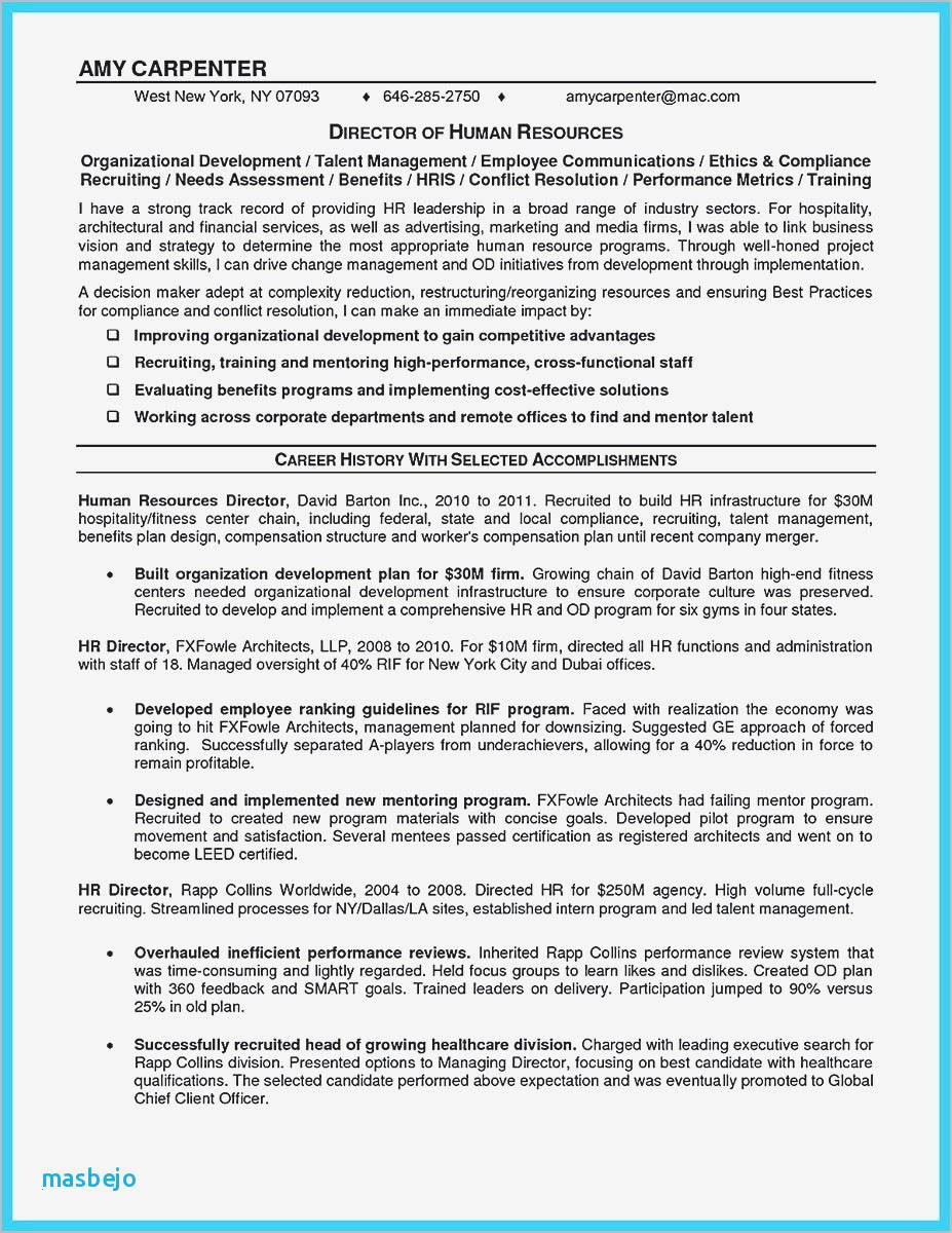 Mergers and Inquisitions Resume Template - Mergers and Inquisitions Resume Template Unique Xing Cv Template