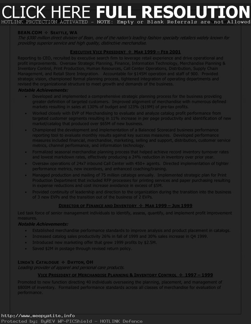Mergers and Inquisitions Resume Template - Cfo Resume