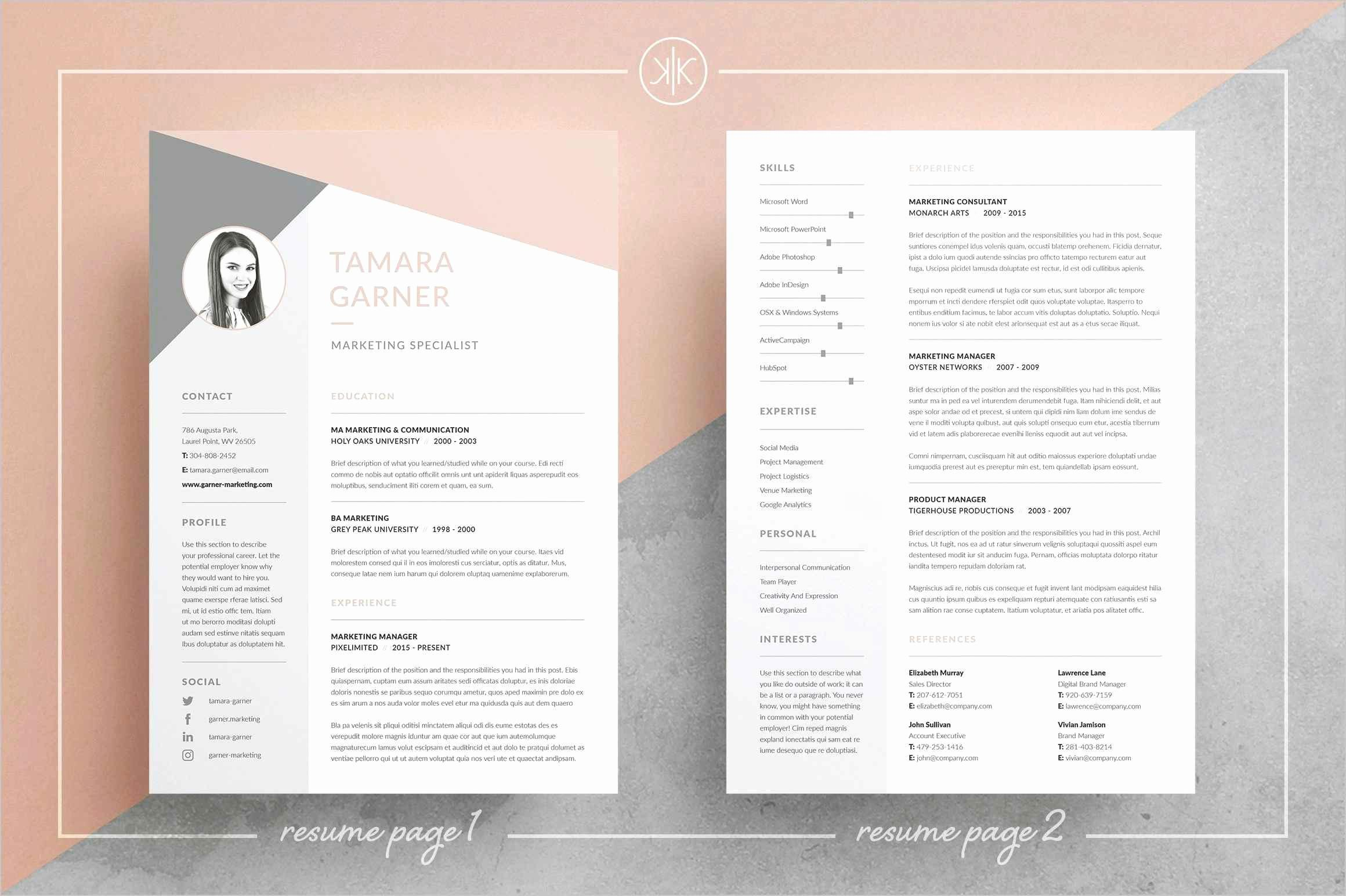 Mini Resume Template - Resume Template Elegant Simple Resume Download Download Elegant Pr