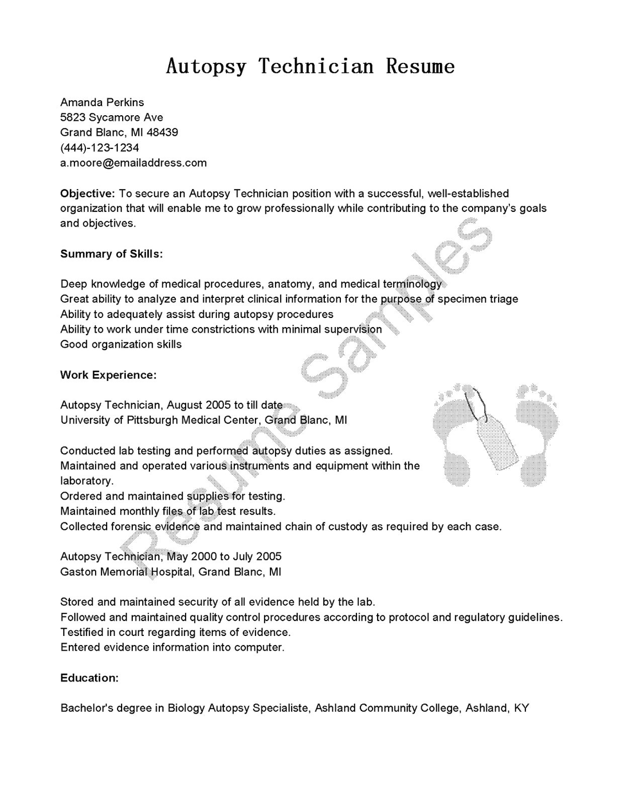 Pages Resume Templates - Resume Template for Pages Luxury Job Application Resume New Best