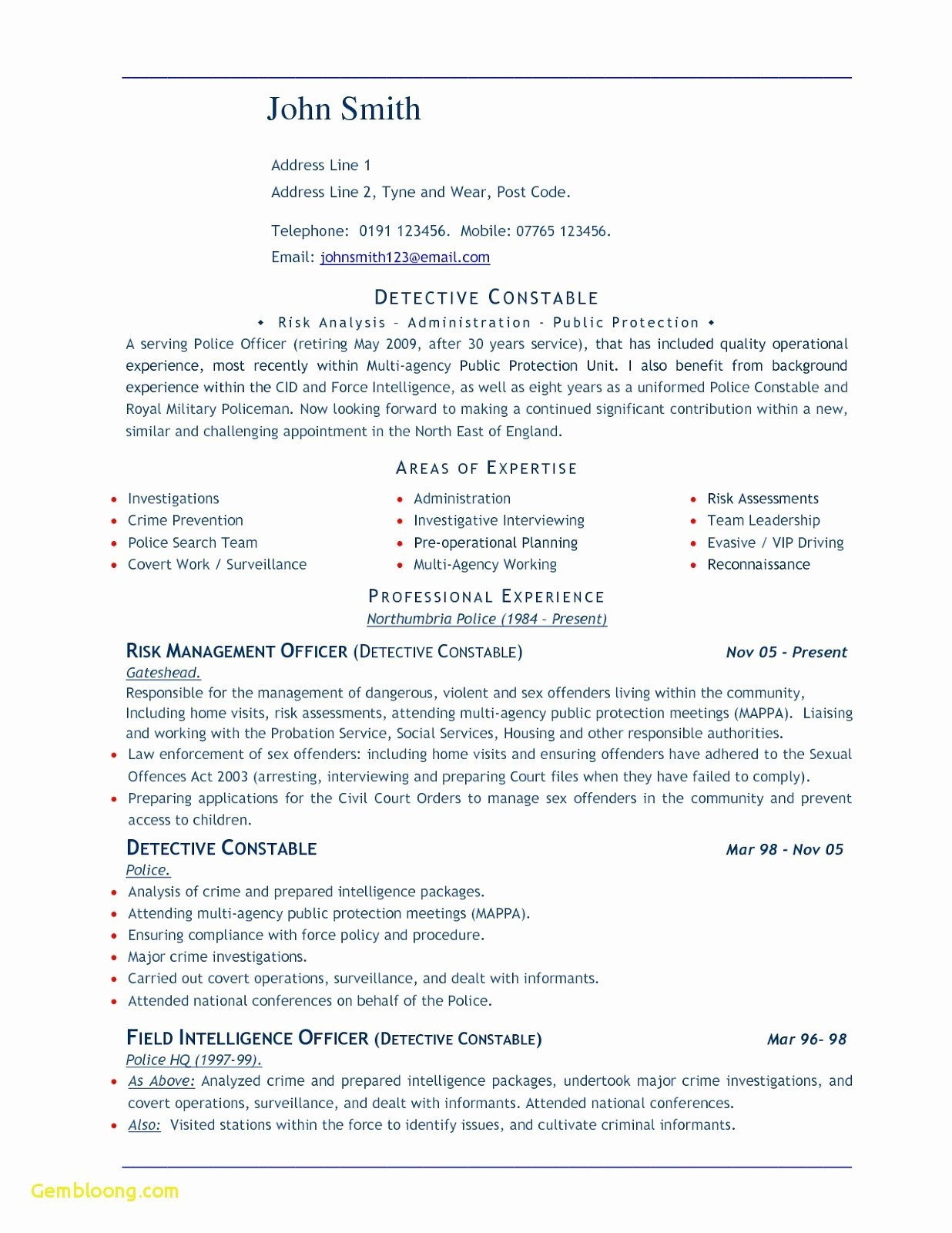 Police Resume Template - Resume Microsoft Word New Best Federal Government Resume Template