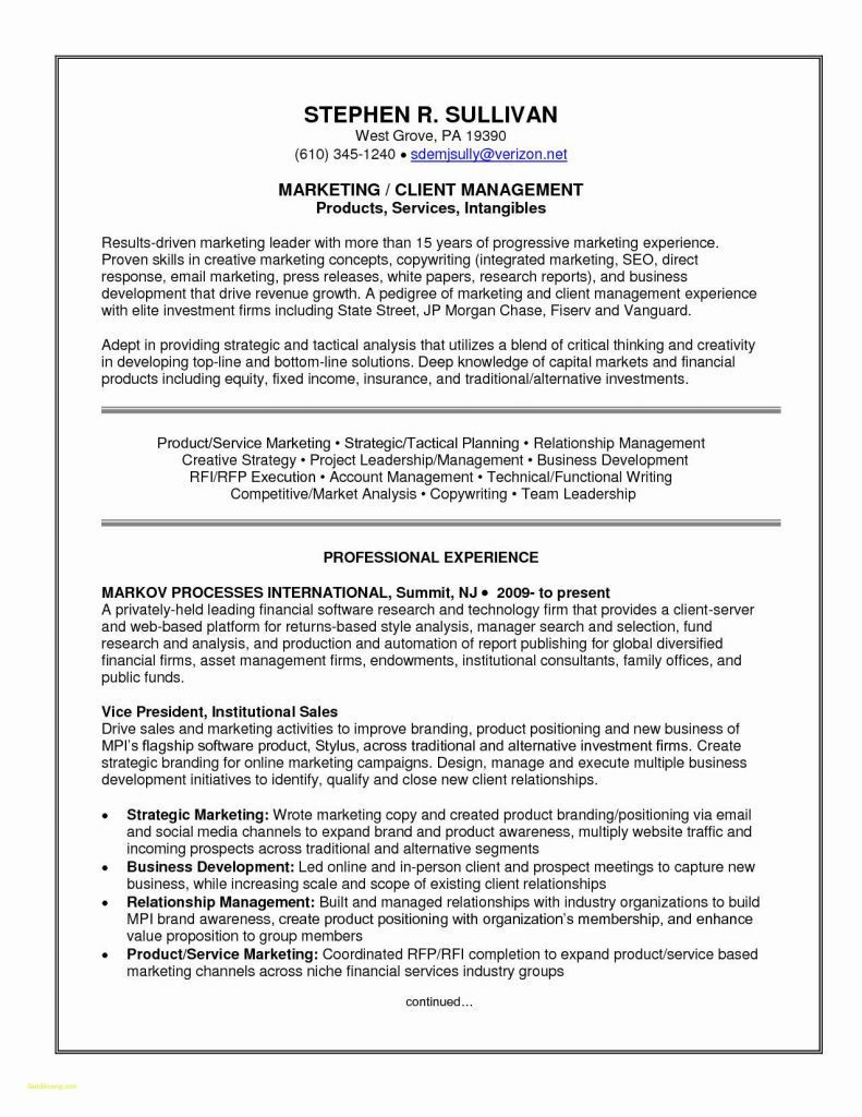 Product Manager Resume Sample - Art Director Resume Sample Awesome Basic Sample Resume and Ideas