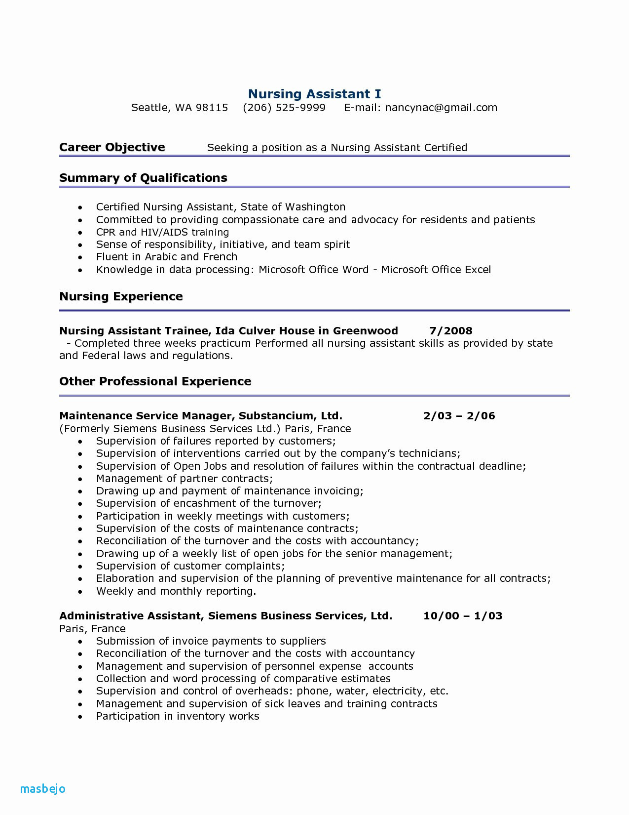 Professional Business Resume - An Example Resume Resume
