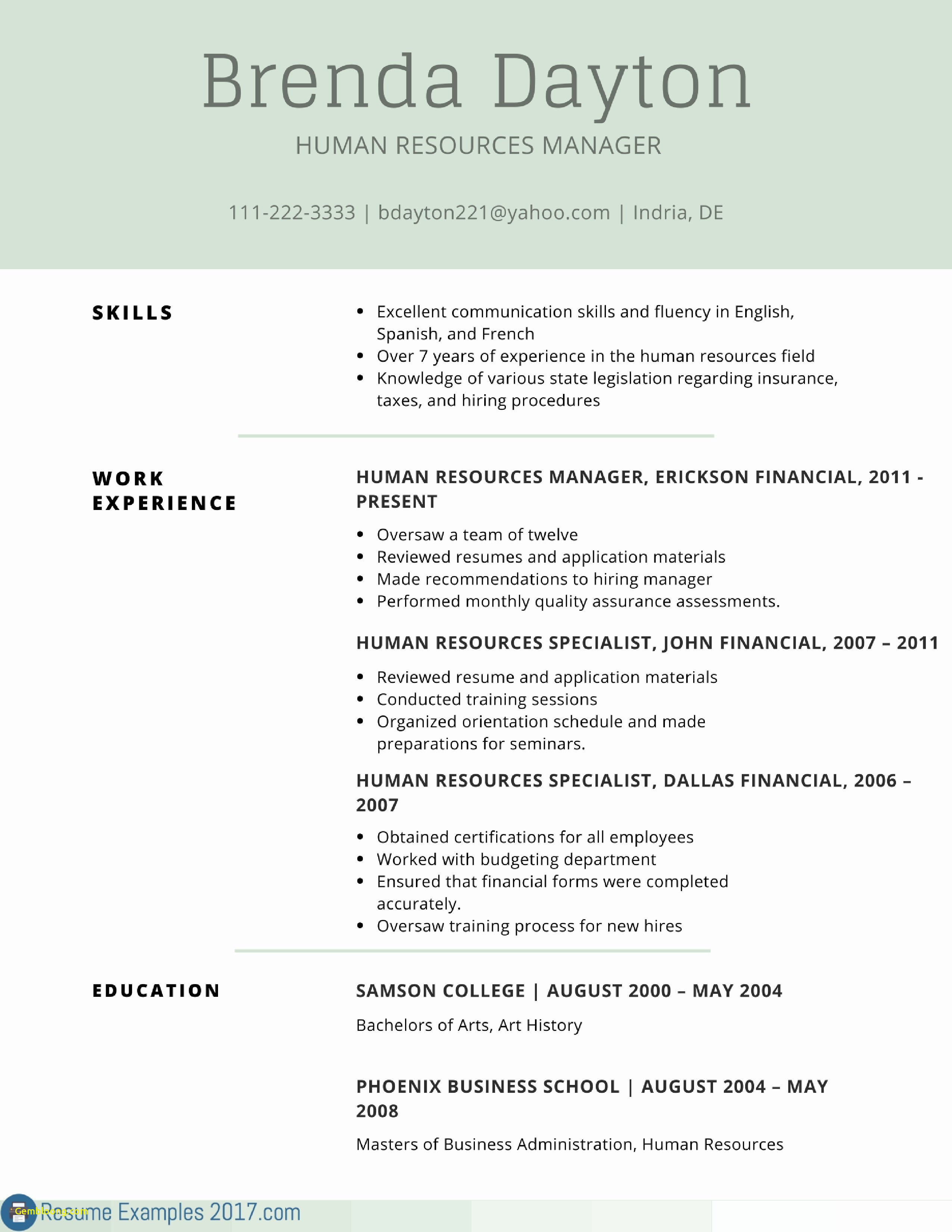 Professional Resume Sample - Elegant Resume Examples It Professional
