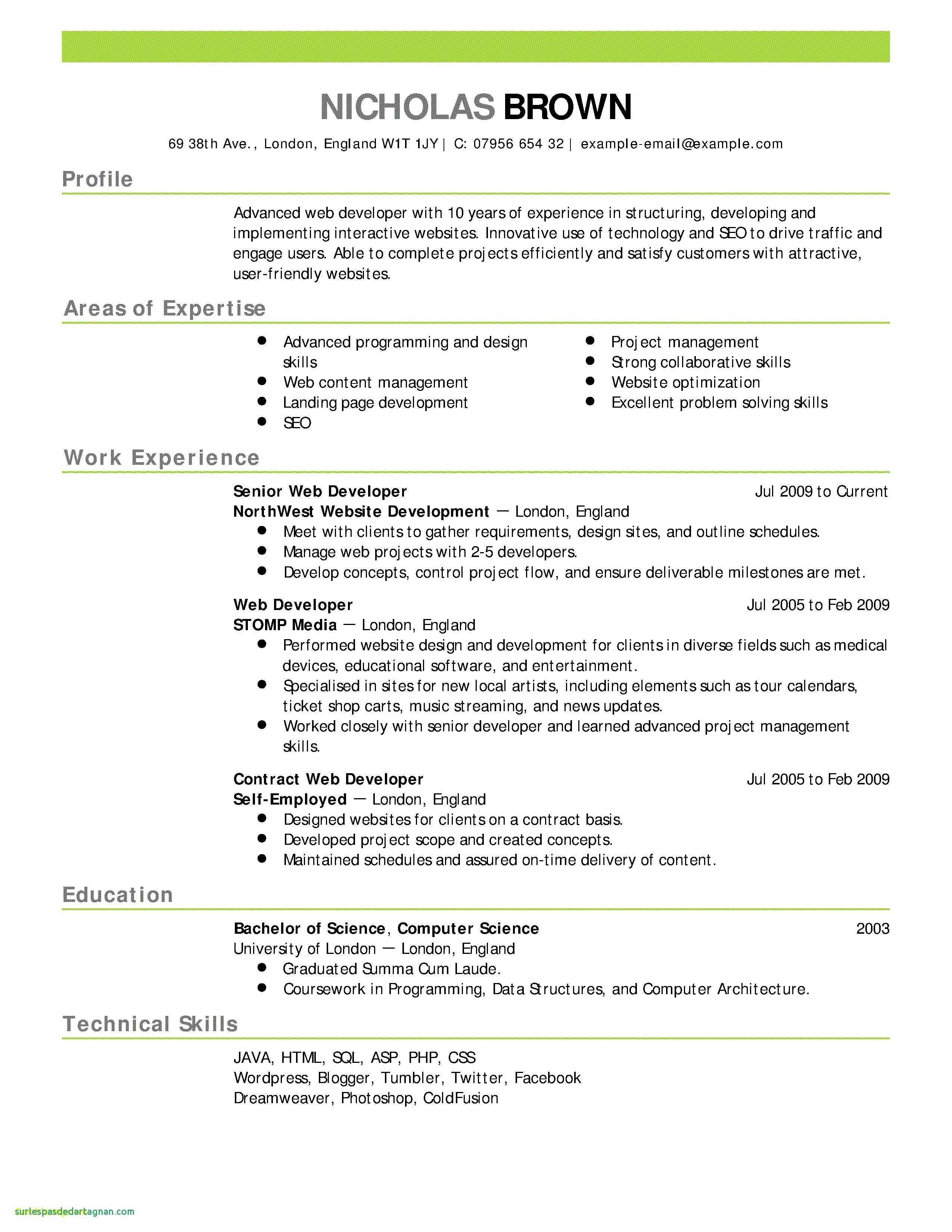 Programmer Resume Template - √ Simple Ppt Template New Beautiful Make A Resume Basic Resume