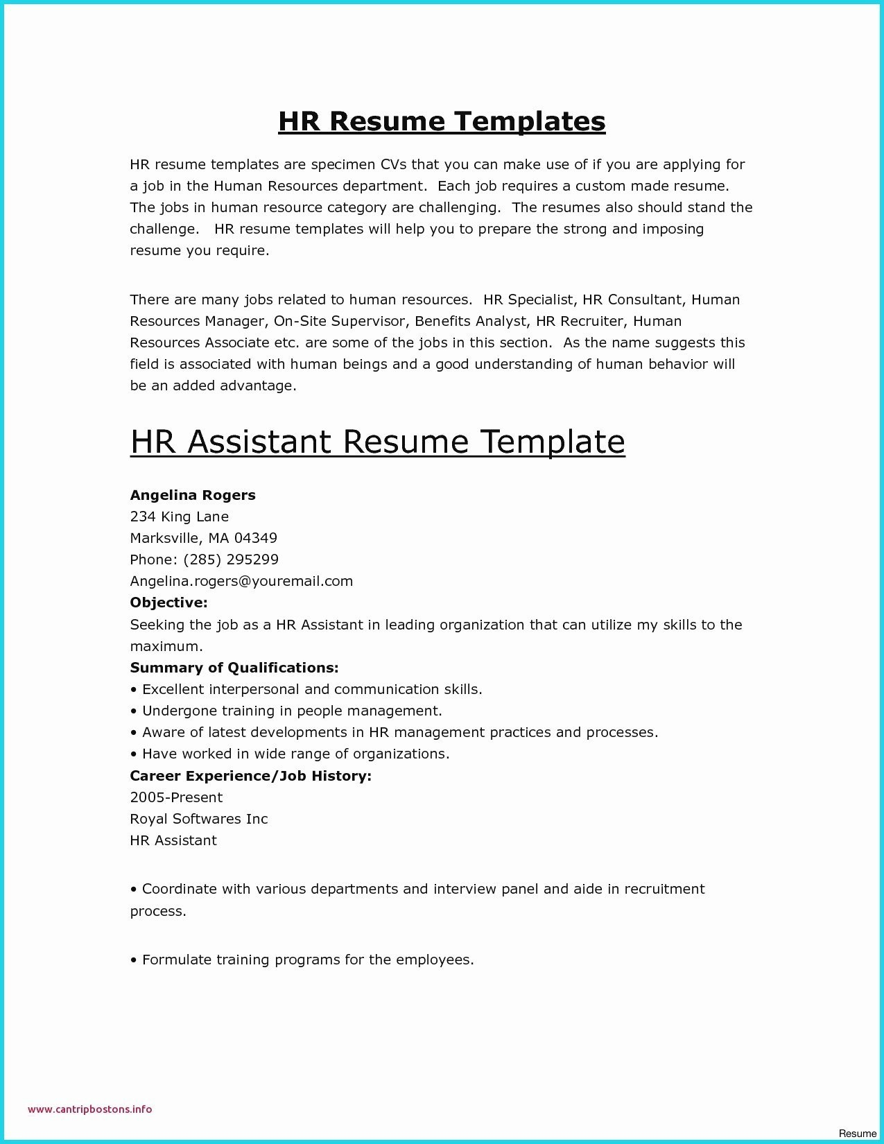 Responsive Resume Template Free - 25 New Federal Government Resume