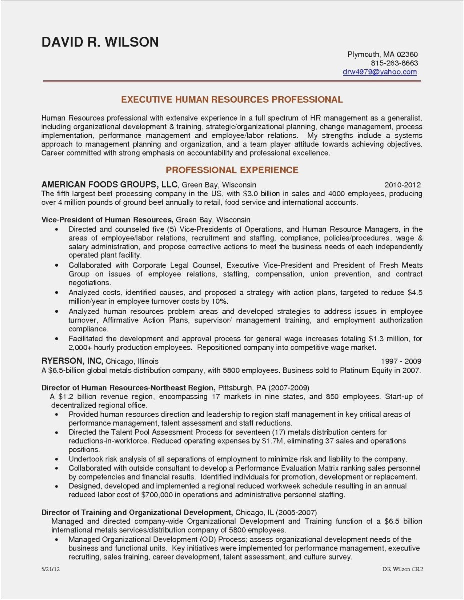 resume career summary Collection-Career Summary Resume Inspirational Resume format Summary Picture Resume Career Summary Examples Ideas 1-d