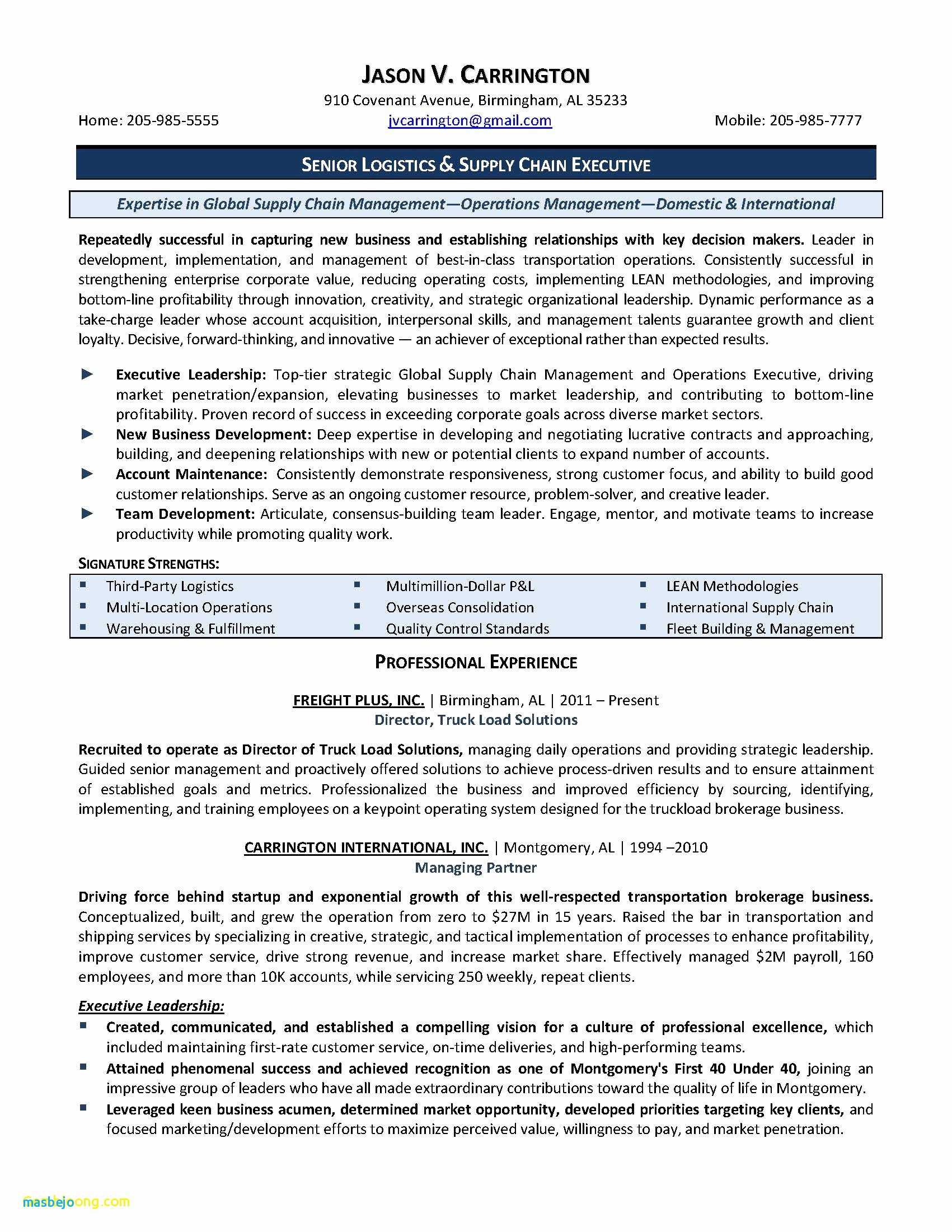Resume Cv Difference - Senior Executive Resume Examples New Resume Cv Executive Sample