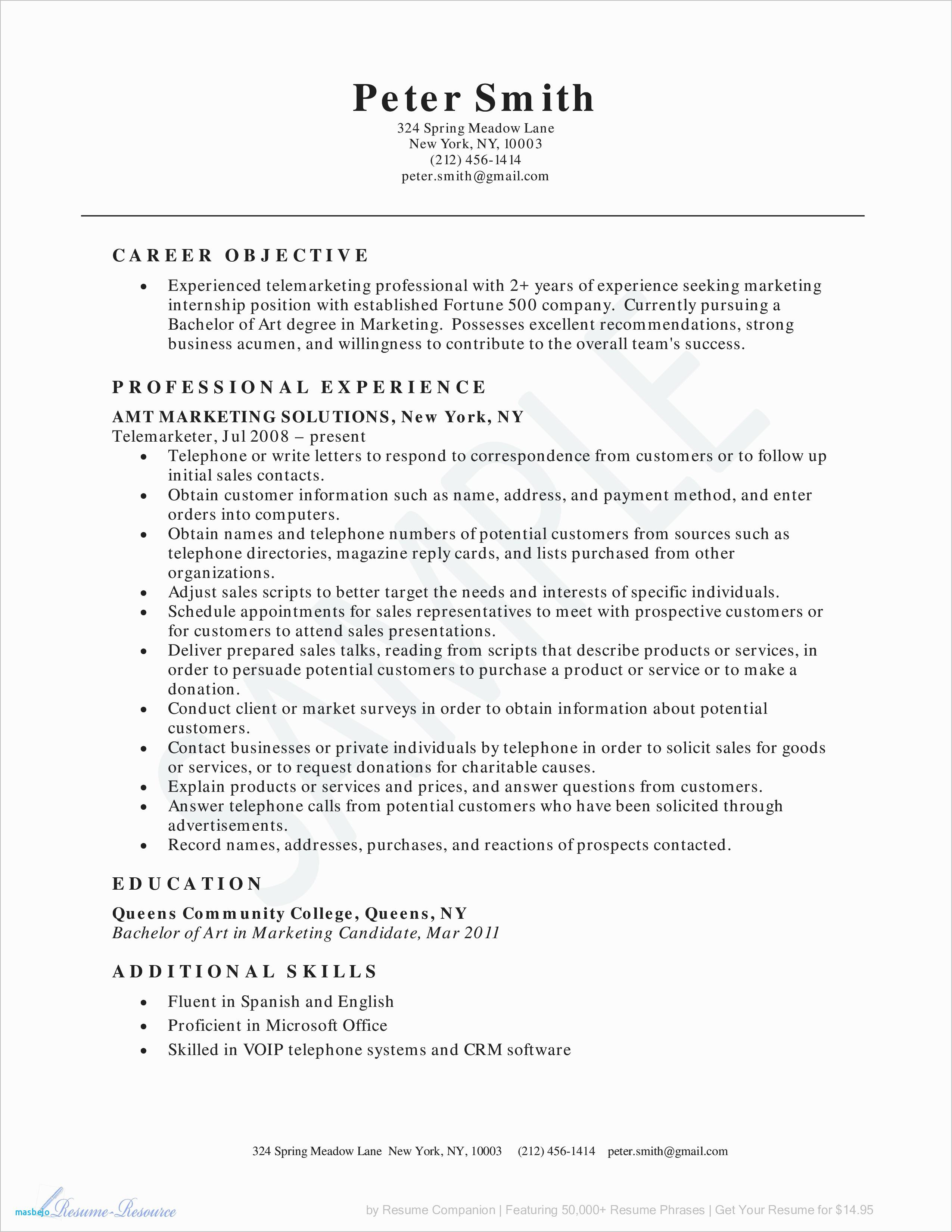 Resume Introduction Examples - Resume Introduction Examples Inspirational Resume Introduction