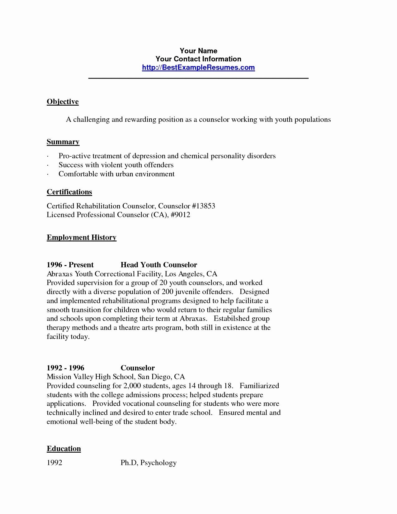 School Counselor Resume - Guidance Counselor Cover Letter Refrence Camp Counselor Resume
