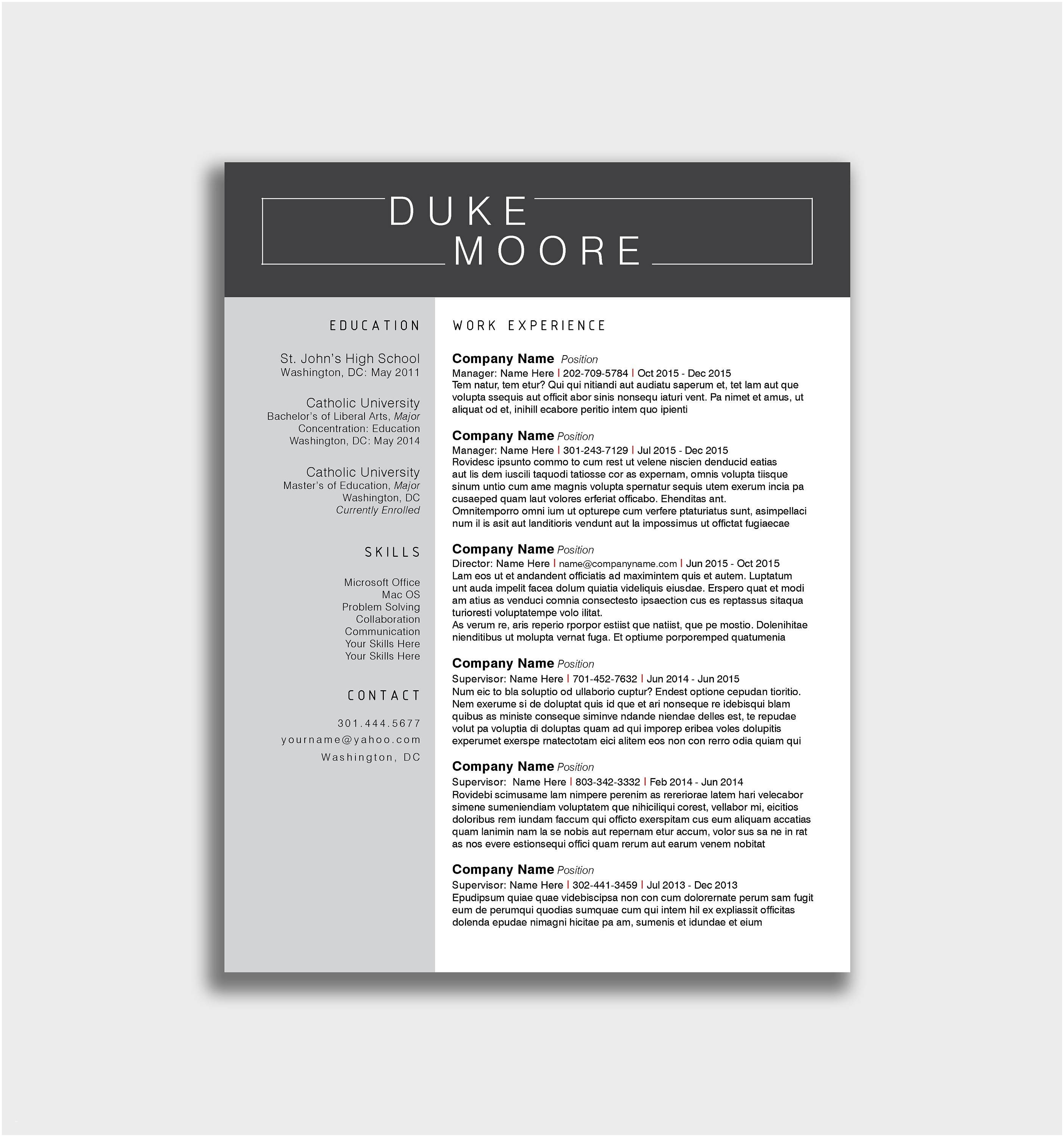 Shidduch Resume Template - Free Minimalist Resume Template Word