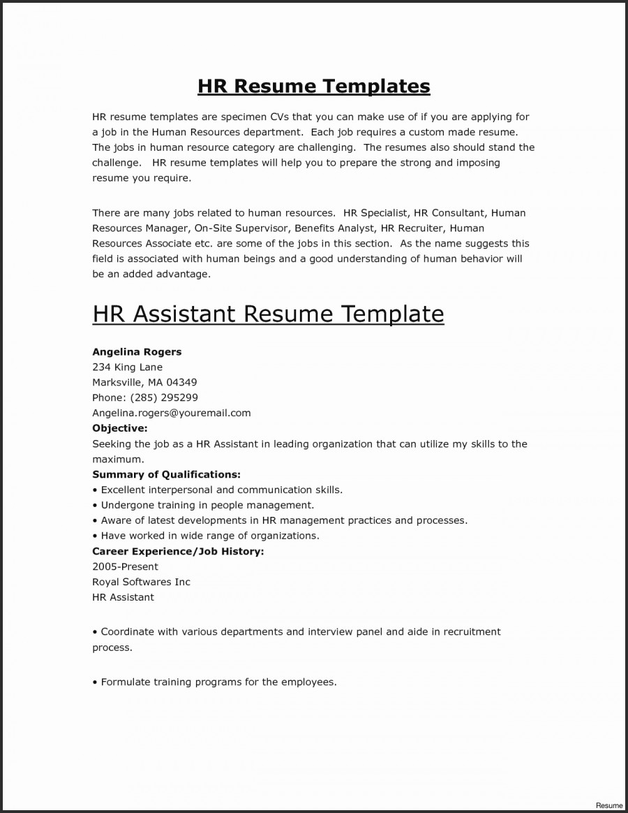 Software Developer Resume Template - Resume Templates Developer Resume Template 11 Awesome Stock Sample