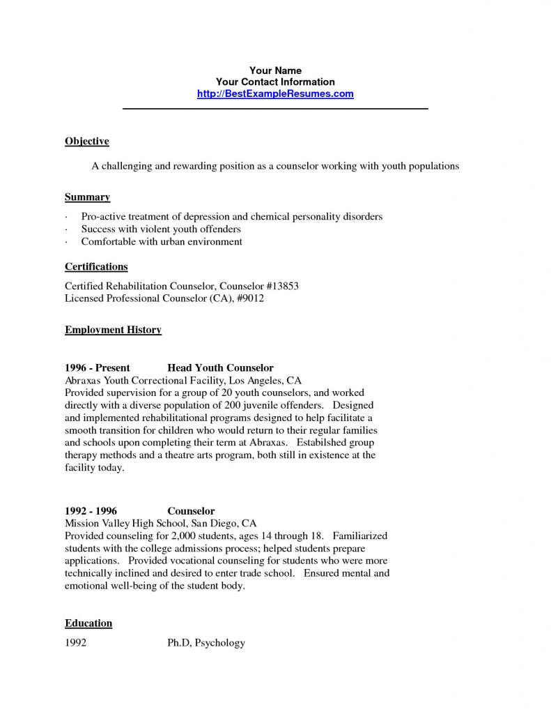Summer Camp Counselor Resume - Fresh Summer Camp Counselor Resume Samples Vcuregistry