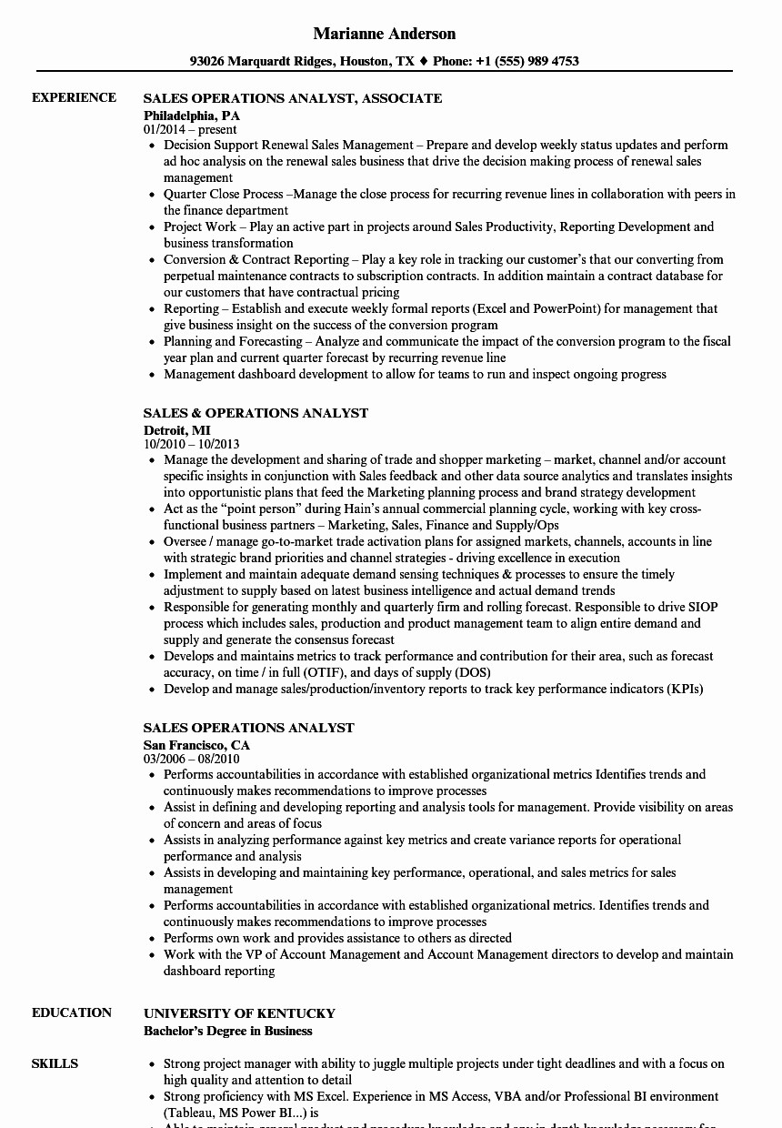 System Analyst Resume - System Analyst Resume Beautiful Fresh Programmer Resume Template