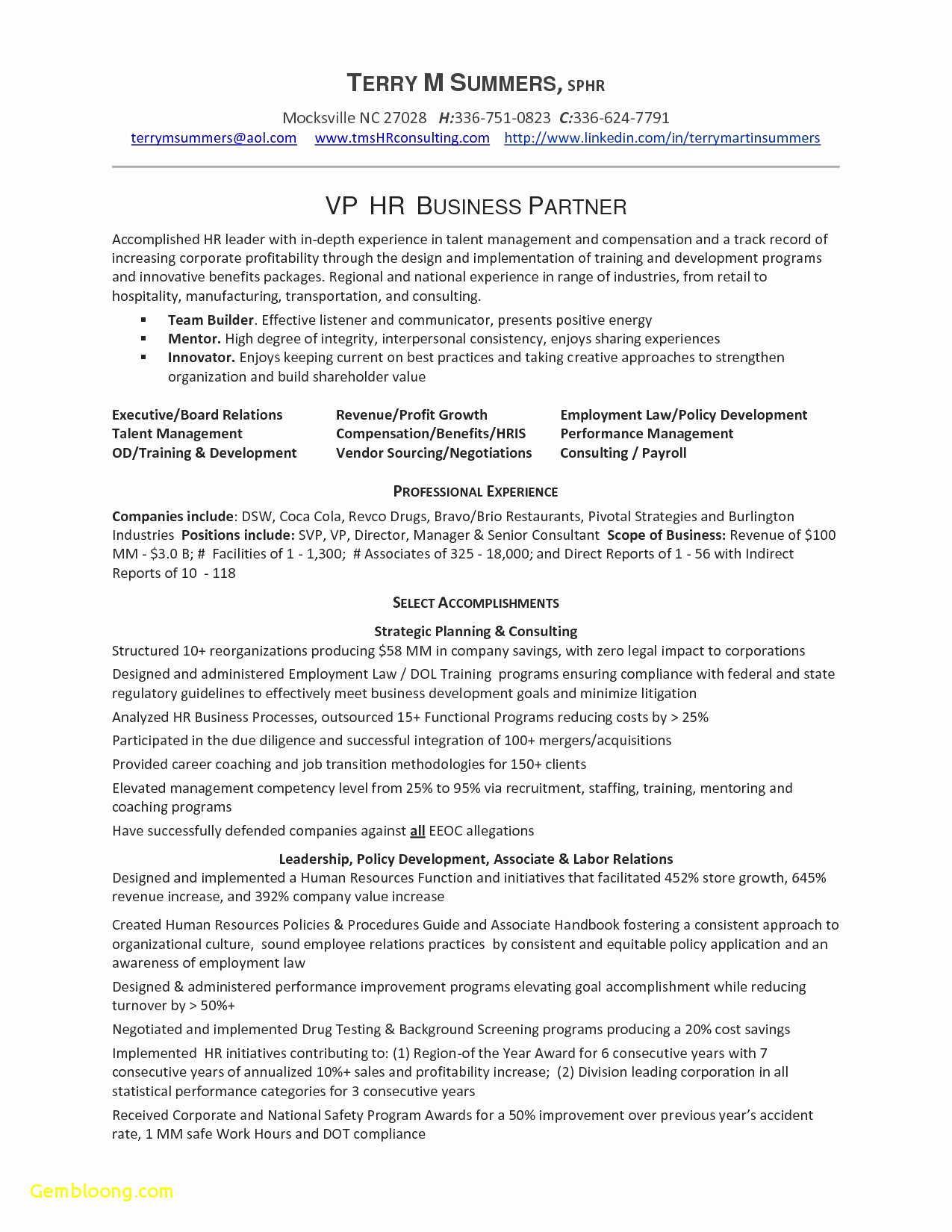 Travel Agent Resume - Travel Agent Resume Sample Examples Great Resume Yelommyphone Panyco